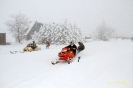 Ski Kjöring Satzung